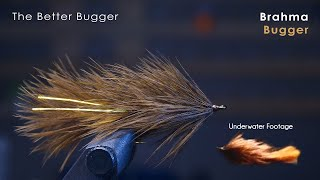 the BETTER Wooly Bugger! - UNDERWATER FOOTAGE! - McFly Angler Fly Tying Tutorials