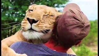 ???? IMPOSSIBILE NON AMARE ❤️ GLI ANIMALI ????????????????