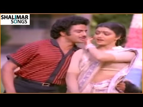 Palnati Puli Movie      Neeku Pettanivvu Muddu Medha Video Song    Balakrishna , Bhanupriya