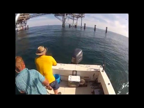 Snapper and Gag Grouper Fishing Reel Attraction Charters