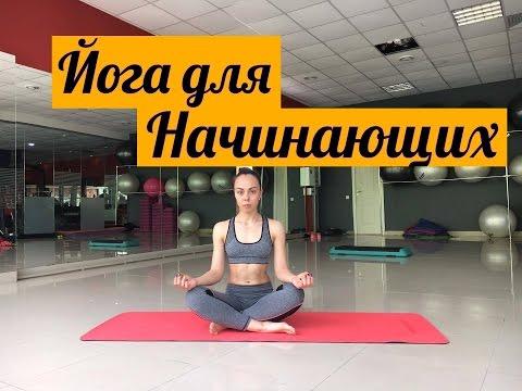 Йога для начинающих. Видео-уроки в домашних условиях