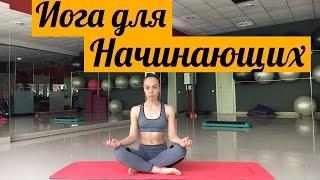 Йога для начинающих - видео-урок [Slim Body Fitness]