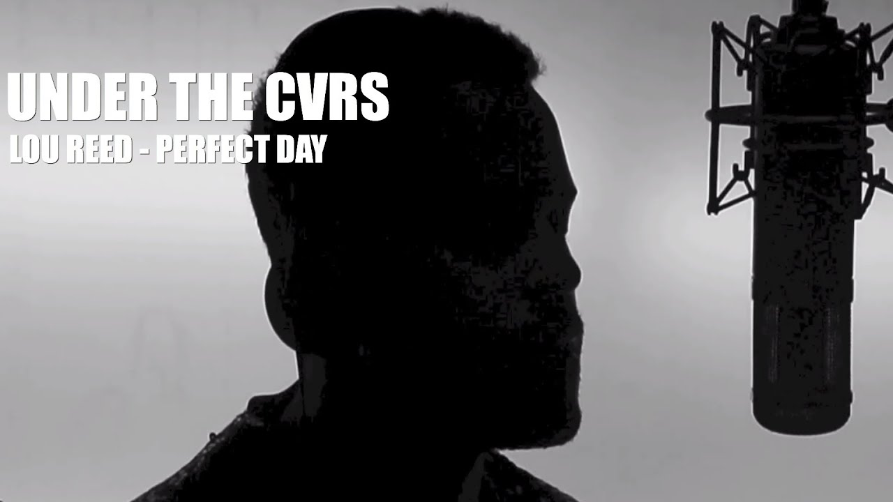 Watch Twin Shadow's Touching Lou Reed Cover 'Perfect Day' | SPIN