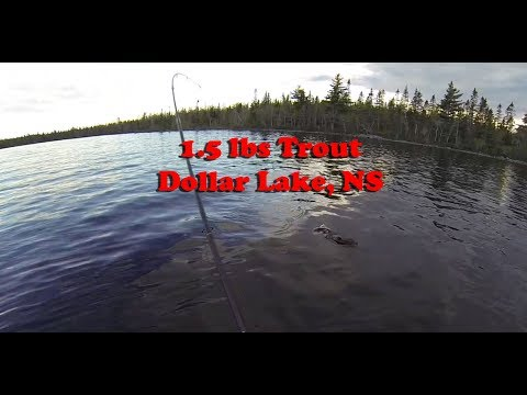 Wild Nova Scotia Big Trout