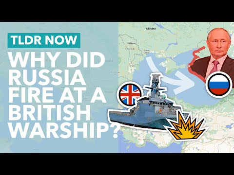 Why Russia Fired at a British Warship: The Black Sea Dispute Explained - TLDR News