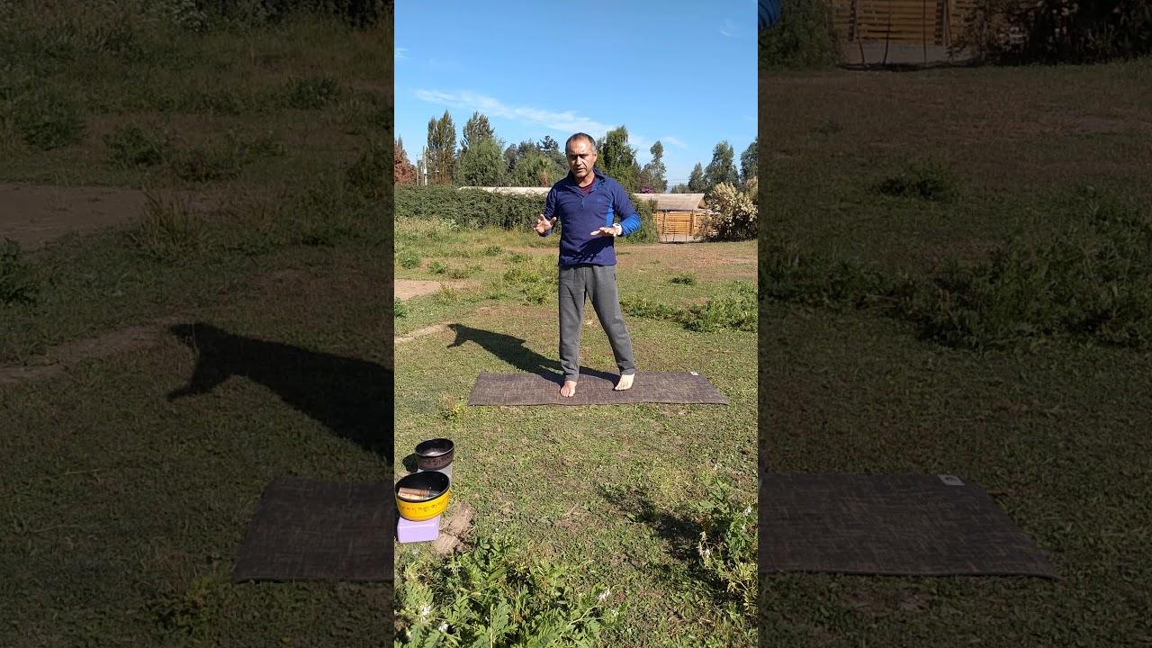 Yoga saludo al sol, colegio Hans Christian Andersen San Fernando Chile