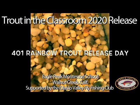 2020 Eagle Peak Montessori School Trout Release Day