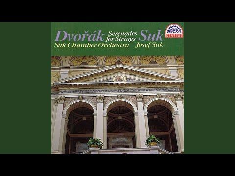 Serenade For String Orchestra In E Flat Major, Op. 6 - Adagio