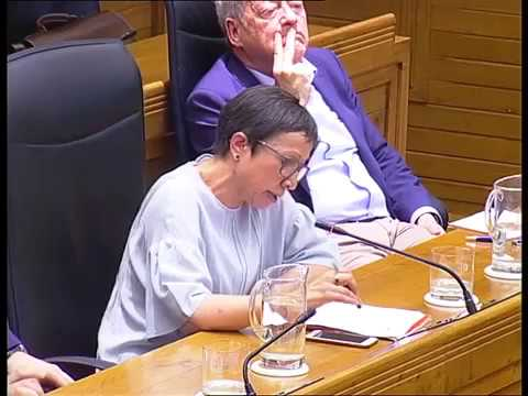 Pleno extraordinario. Intervención Yolanda Huergo
