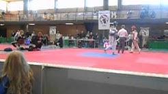 WTF Taekwondo competition, Pori Open 02/04/2016