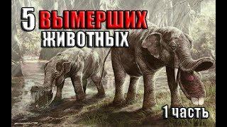 5 ВЫМЕРШИХ животных, которых мы больше не увидим (1часть)