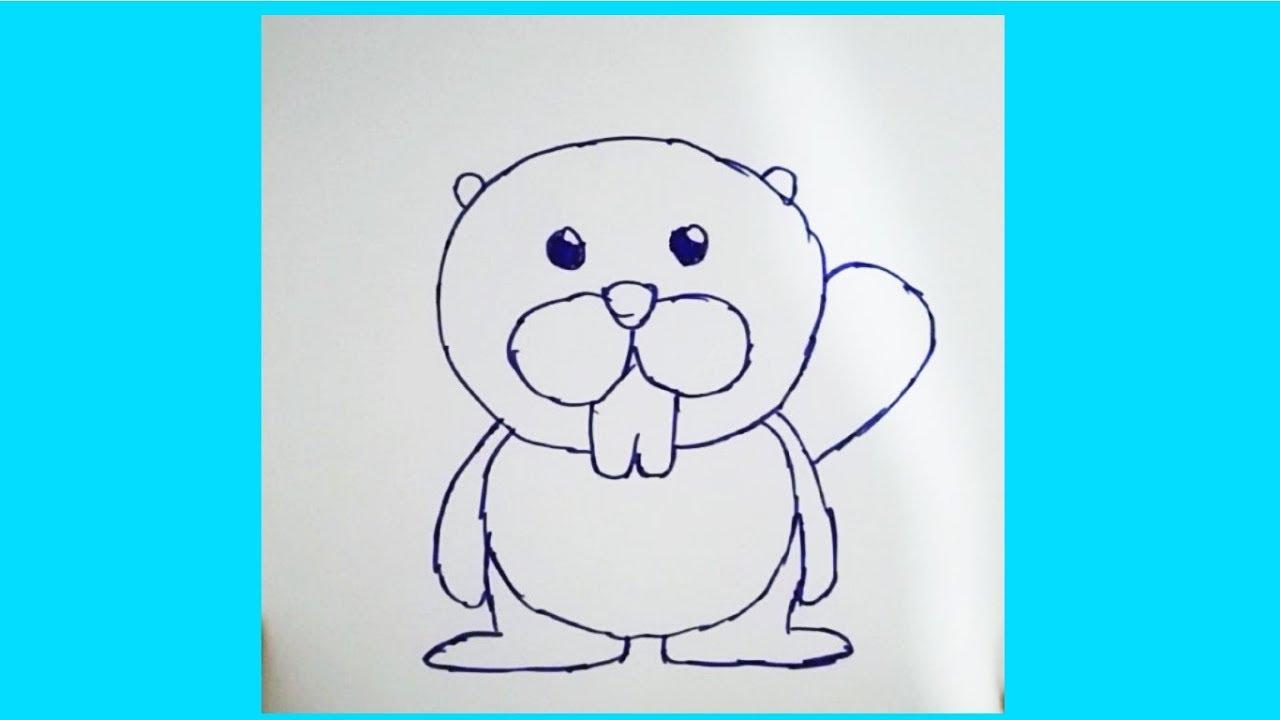 Sevimli Kunduz çizimi Kolay Hayvan çizimi Youtube