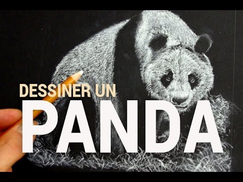 Comment dessiner un panda en negatif youtube - Panda a dessiner ...