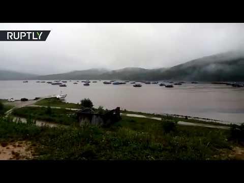 Суда из КНДР пережидают тайфун у берегового посёлка Ольга в Приморье