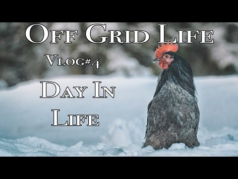 Off Grid Life: An ordinary day off the grid in Sweden