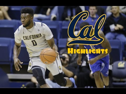 premium selection 32d42 f662c Jaylen Brown 2015- 2016 Cal Highlights - HD