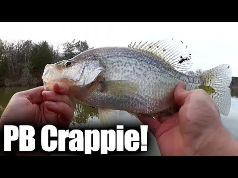 my-personal-best-crappie-13+-inches!-winter-crappie-fishing-2019
