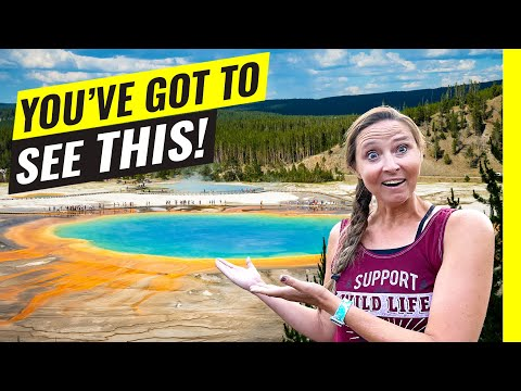 Yellowstone National Park: 10 Tips For Getting THE MOST Out of Your Visit