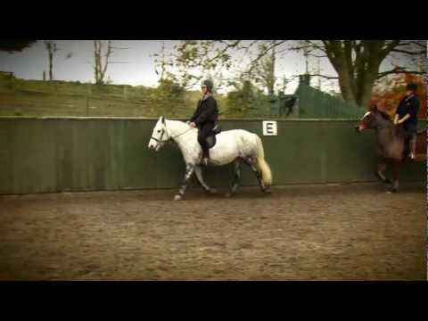 Horse Riding At Crieff Hydro