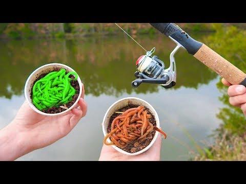 LIVE GLOW Worms Vs BIG Livebait Worms (WALMART Fishing)