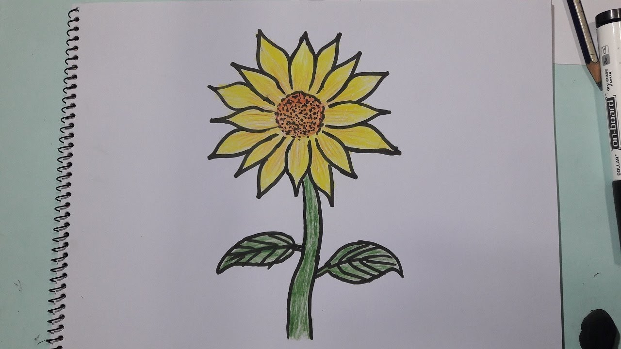 How To Draw A Sunflower Easy Step By Drawing Tutorial Avro School