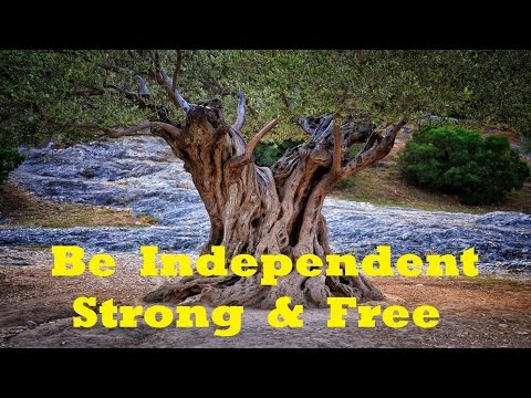Be More Independent  - Increase Your Personal Freedom | Subliminal Isochronic Meditation