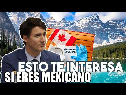 CANADÁ Éstas serán las RESTRICCIONES post Pandemia para ENTRAR al PAÍS