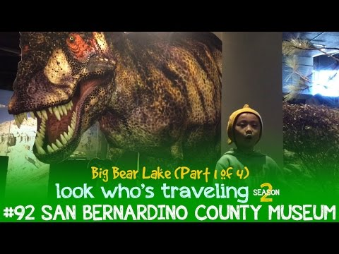San Bernardino County Museum (Things to do in Big Bear Lake): Look Who's Traveling