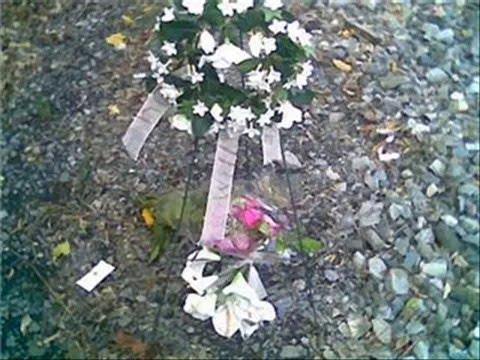 Memorial Slideshow for Will Stewart