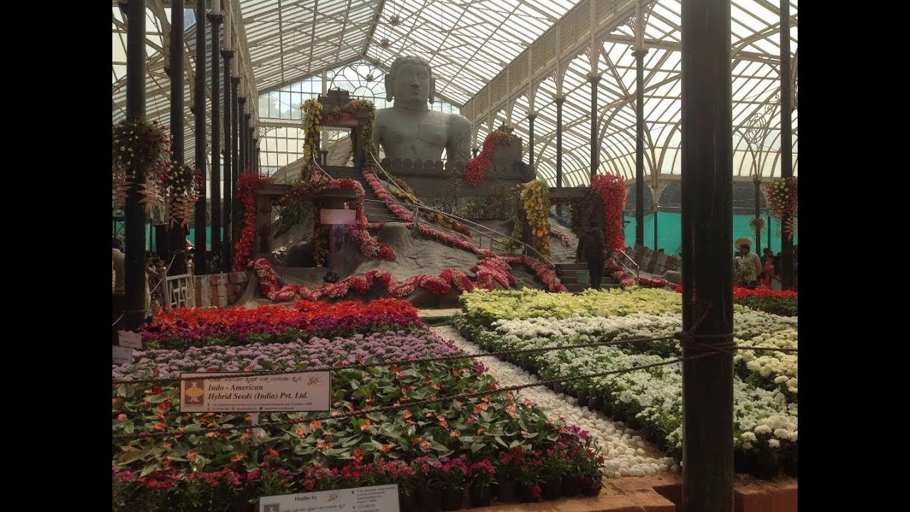 791184b9ae64 BANGALORE LALBAGH FLOWER SHOW 2018 - IMAGES - YouTube