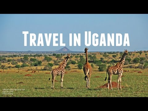 What It Looks Like to Travel in Uganda//Rwanda 烏干達/盧安達 2016