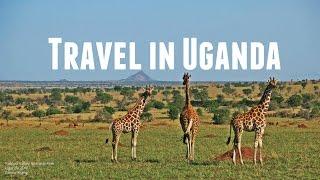 What It Looks Like to Travel in Uganda//Rwanda 烏干達/盧安達 2016