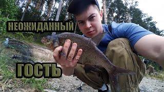 Поймал БОНУС Рыбалка на реке