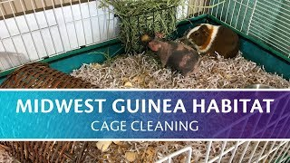 Cleaning My Midwest Guinea Habitat Cage