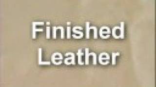 Identifying Types of Leather