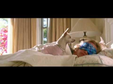Beverly Hills Chihuahua - Musicvideo