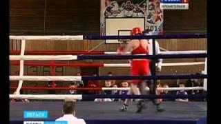 В Вельске прошёл турнир по боксу(На юге области прошёл турнир памяти основателя Вельской школы бокса Василия Дементьева. Уже 15 по счёту., 2015-04-21T09:54:31.000Z)