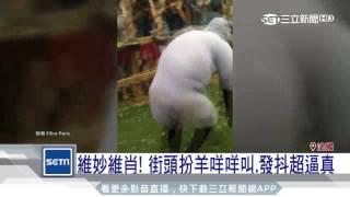 法國最近有一群男女在街頭扮起了羊咩咩,上演了真人版的綿羊歷險記,一...