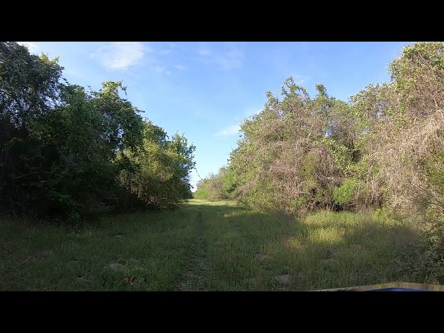 2166 County Road 212 Hallettsville TX - 71 acres of land for sale