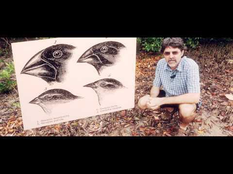 Introduction to Charles Darwin, Evolution and Tropical Australia MOOC