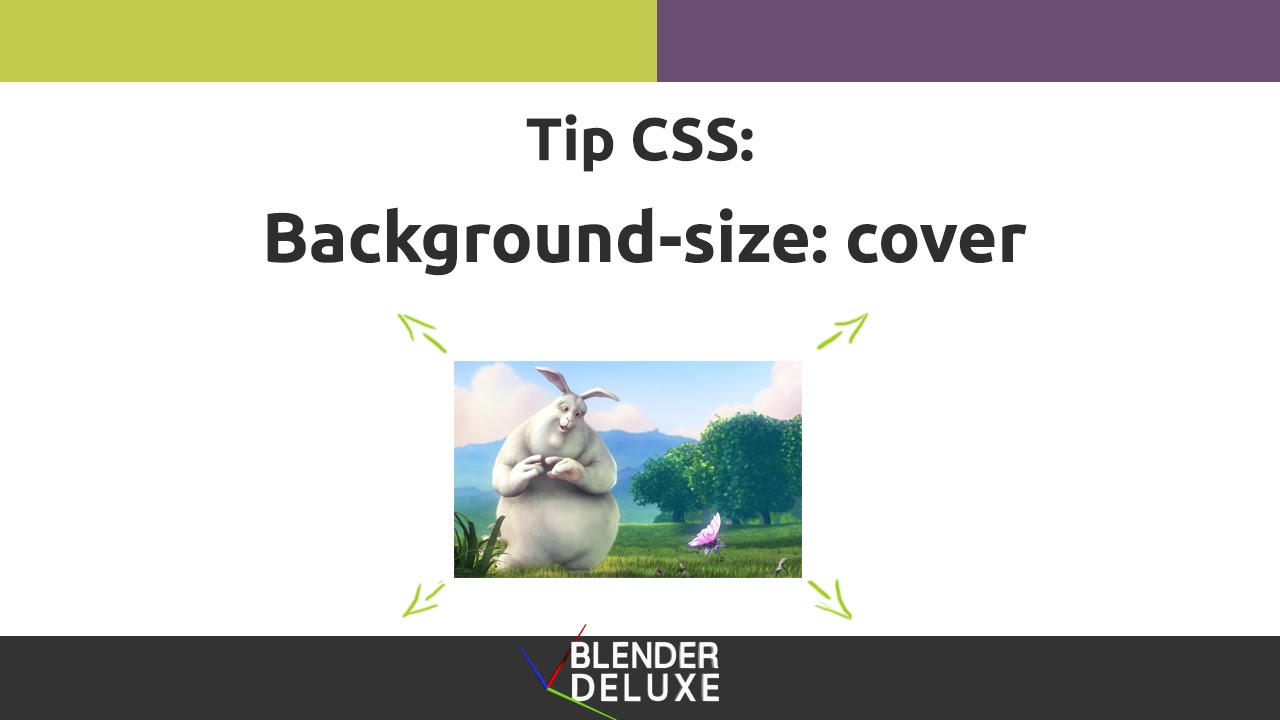 Background image zoomed in css - Tip Css Imagen De Fondo Con Background Size Cover You
