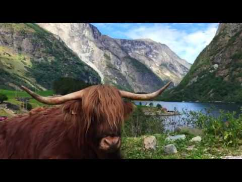 HOLIDAY IN NORWAY 2018