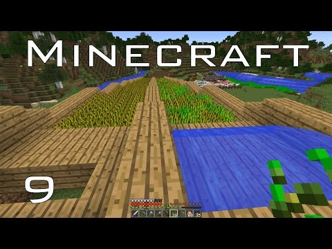 Terraced Farm with Automatic Collection | Daniel Plays Minecraft | E09