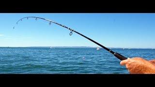 Рыбалка в Новой Зеландии/Fishing in New Zealand