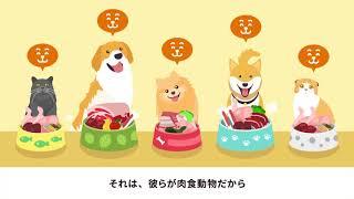 犬や猫の本来の食事「生食(なましょく)」を再現したK9ナチュラル。な...