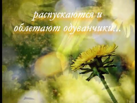 Сентябрь   Рэй Брэдбери «Вино из одуванчиков»