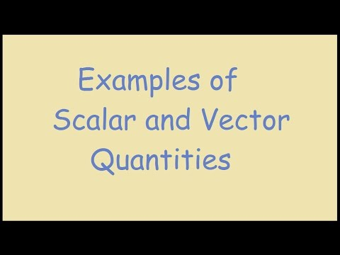 Examples of Scalar and Vector Quantities