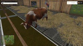 Hodowla krów- Farminig Simulator 2015