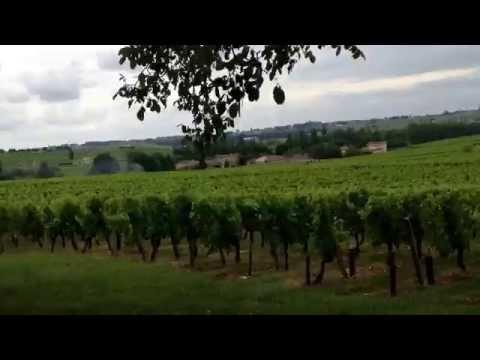 Biking Medoc & St. Emilion, Bordeaux France
