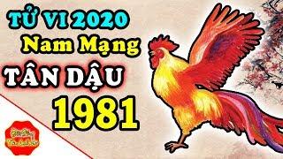 Tử Vi Tân Dậu Nam Mạng 1981 Năm 2020, Tiền Bạc Ra Sao, Chi Tiết Và Đầy Đủ